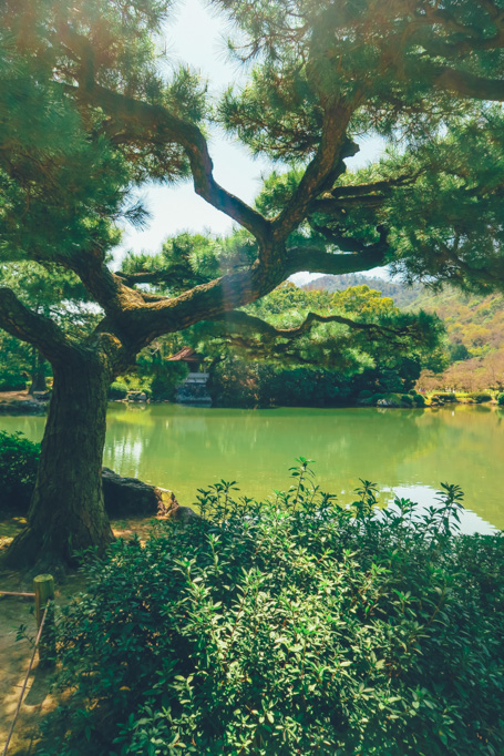 wanderlife, japan, japan tourism, travel, travel blog, gardens ritsurinkoen, takamatsu city, kagawa prefecture. (2 of 19)