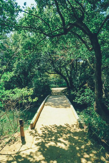 wanderlife, japan, japan tourism, travel, travel blog, gardens ritsurinkoen, takamatsu city, kagawa prefecture. (5 of 19)