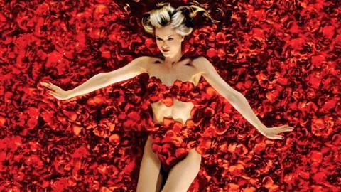 Top 10 Most Beautiful Non-CGI Films
