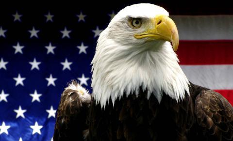 Top 10 Symbols of America