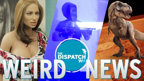 Sex Doll Romance, DIY Death Ray & Dinos on Mars: The Dispatch #30