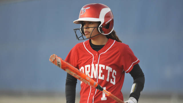 Hornets Softball Drops Two versus Dolphins