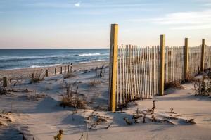 Assateague Nat. Seashore. Photo by WBOC Chief Metr. Dan Satterfield