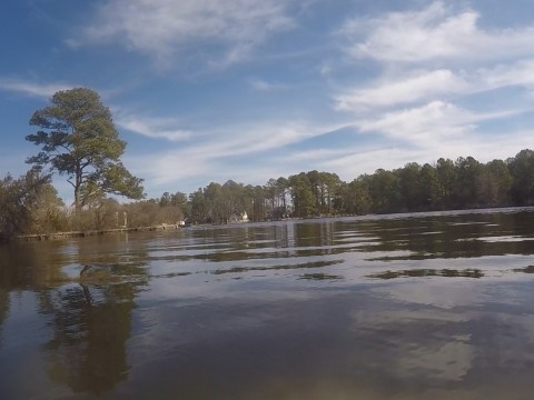 15-3-23 Herring Creek 2