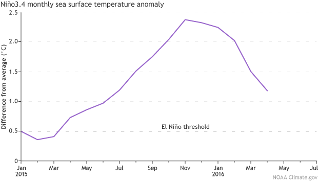Ocean temperatures are cooling rapidly now and El Nino is fading rapidly.