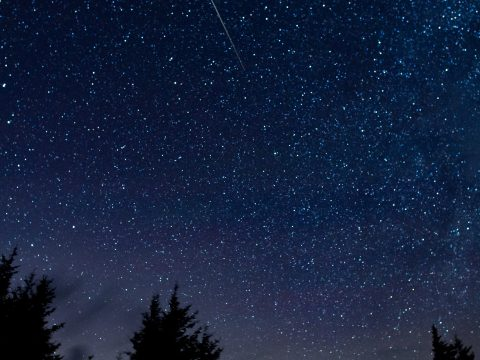 In this 30 second exposure, a meteor streaks across the sky during the annual Perseid meteor shower Thursday, Aug. 13, 2015, in Spruce Knob, West Virginia. Photo Credit: (NASA/Bill Ingalls)