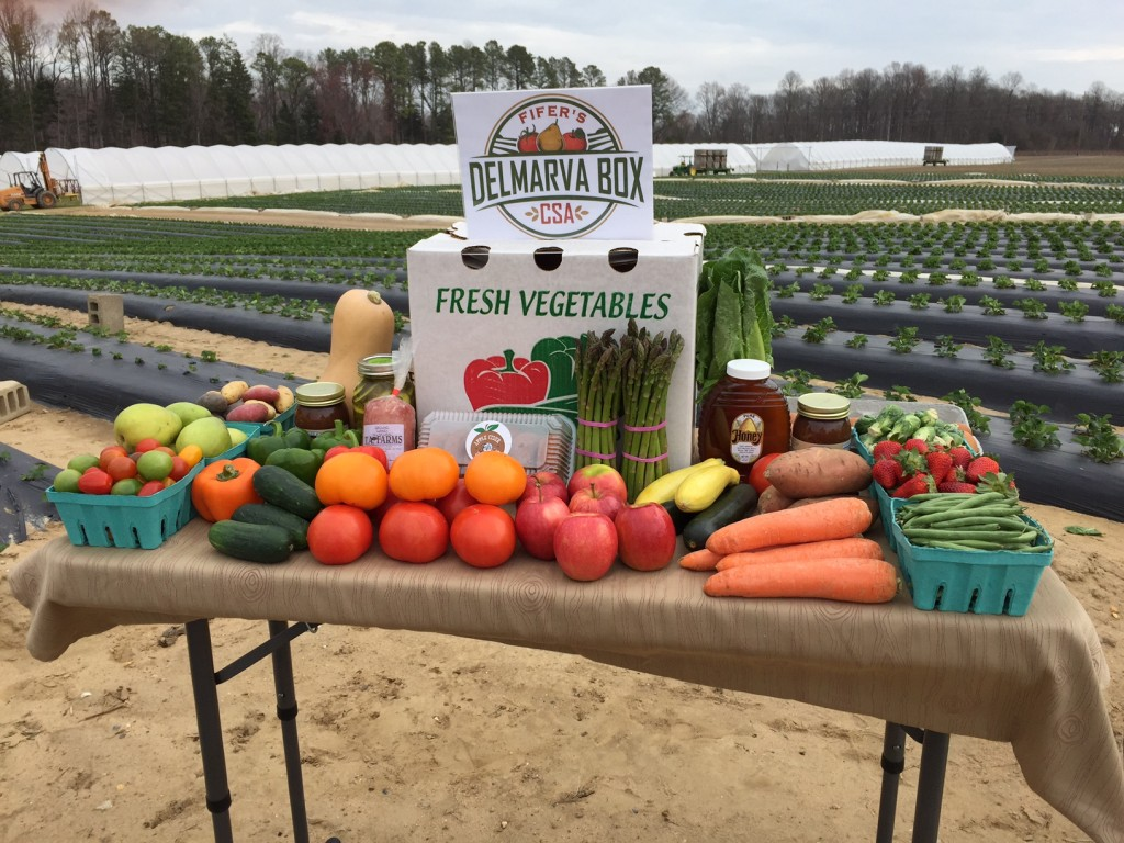 Fifer Orchards' Delmarva Box Program Kicks Off in May – Tuesday, April 7, 2015