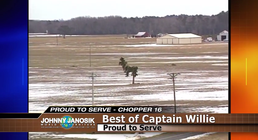 Proud to Serve: Winter Months and Dog Trees