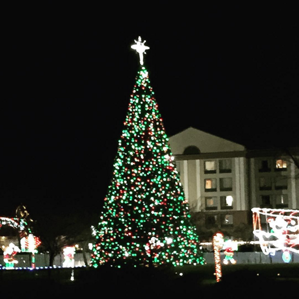 Ocean City\'s Winterfest of Lights Experiences Record Weekend ...