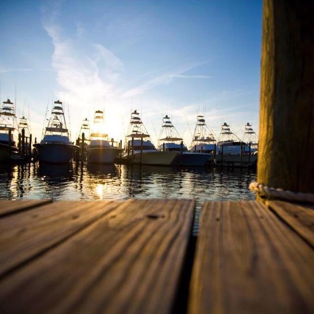 Courtesy: Sunset Marina