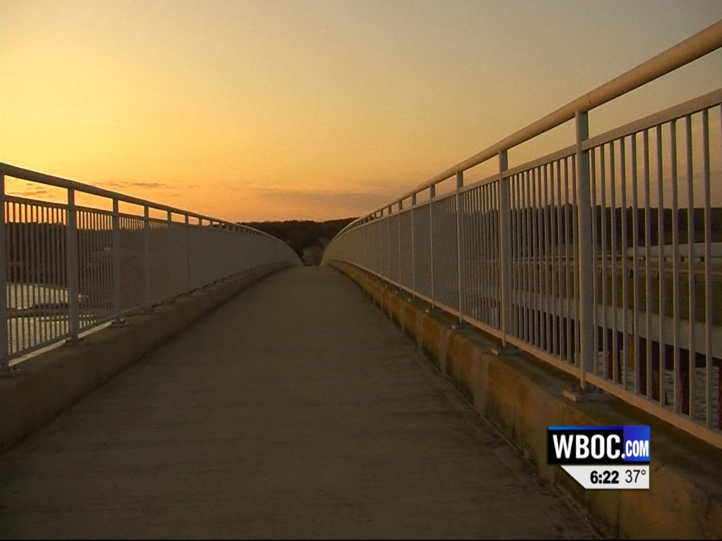 Travels With Charlie: Footbridge at Assateague State Park