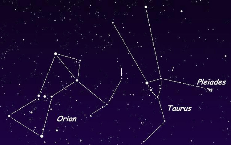 Orion and Taurus (Photo Courtesy: Cseligman.com)
