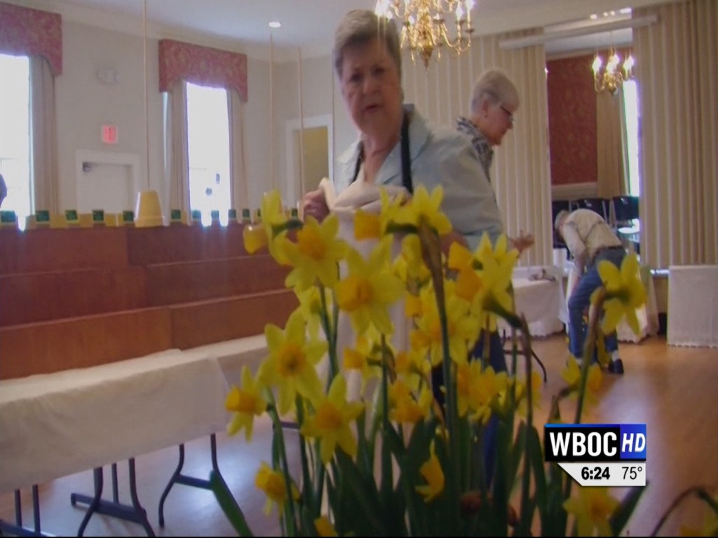 Travels With Charlie: 50th Daffodil Show