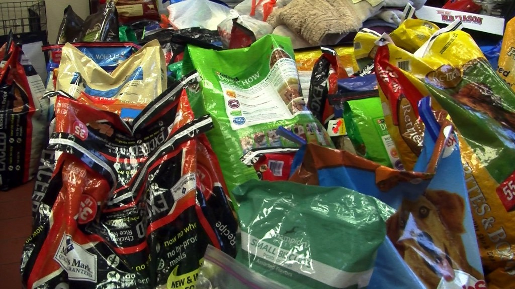 Donations for Rescued Wicomico County Dogs