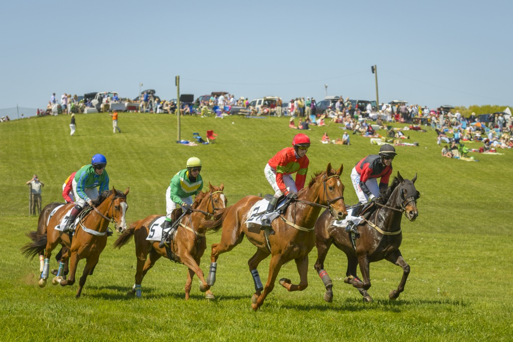 Race to the Action at Winterthur for the 38th Annual Point-to-Point Celebration