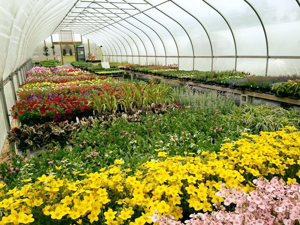 Garden Shack Farm (Photo: Garden Shack Farm)