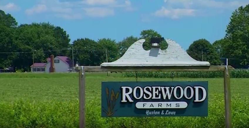 Honoring Delmarva Farmers – Rosewood Farms