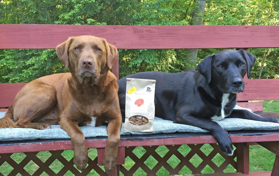 Waggies By Maggie Creates Irresistible Dog Treats for a Cause
