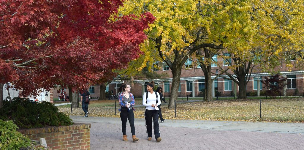 "Salisbury University Named One of the ""50 Most Beautiful Autumn Campuses"" in the US"