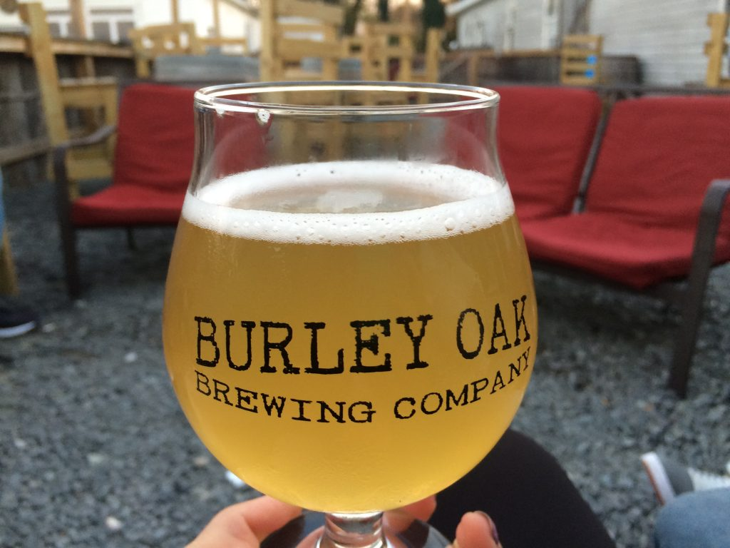 Berlin's Burley Oak Brewery Participates in Giving Tuesday, 'Shore Gives More'