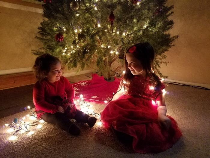 Delmarva's Holiday House 2016- Week of Dec. 18-24