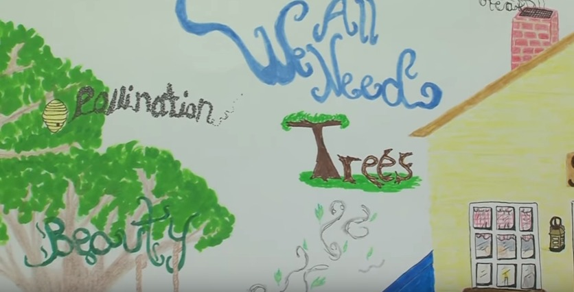 Delaware Association of Conservation Poster Contest Winner speaks on Love for Trees