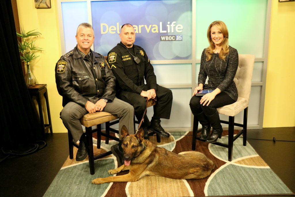 3rd Annual John Brune Law Enforcement K-9 Foundation Fundraiser on March 25 and Checking In on K-9 Brune with the Wicomico County Sheriff's Office