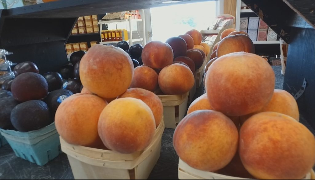 Travels With Charlie: 2017 Peach Season