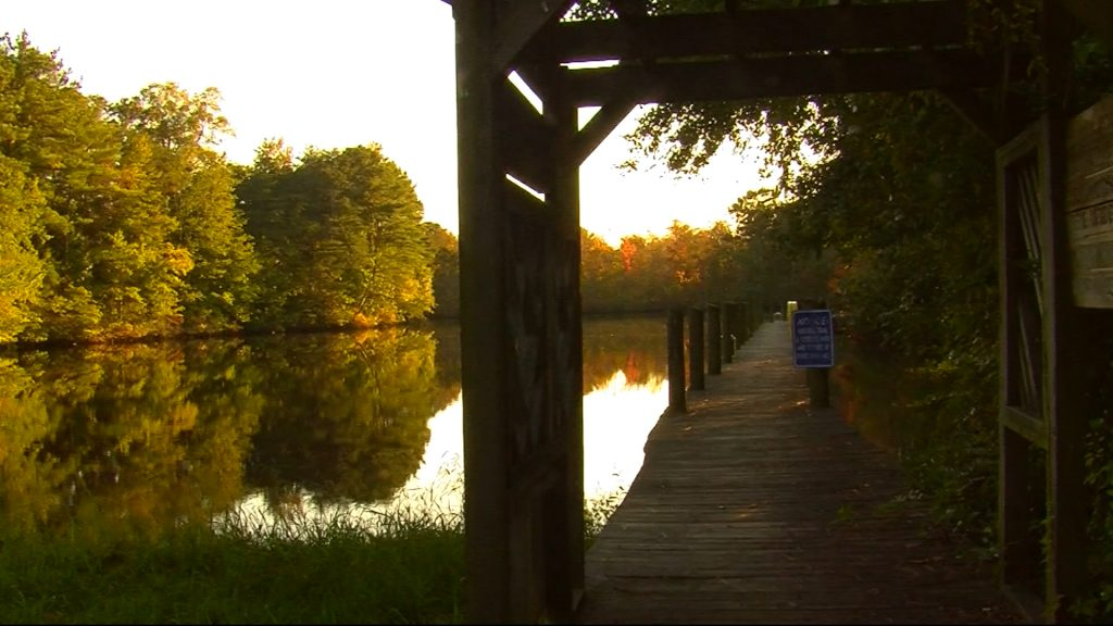 Travels with Charlie: Nature-Walk in Pocomoke City