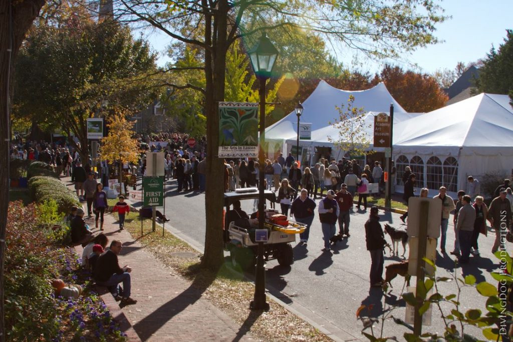 Waterfowl Festival This Weekend in Easton, Nov. 10-12