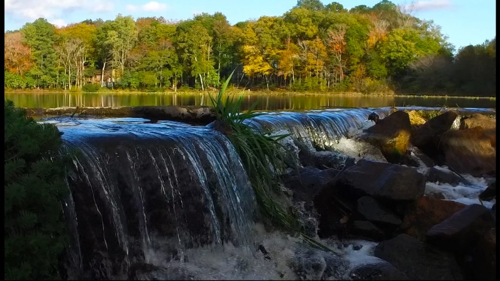 Travels With Charlie: By the Old Mill Pond