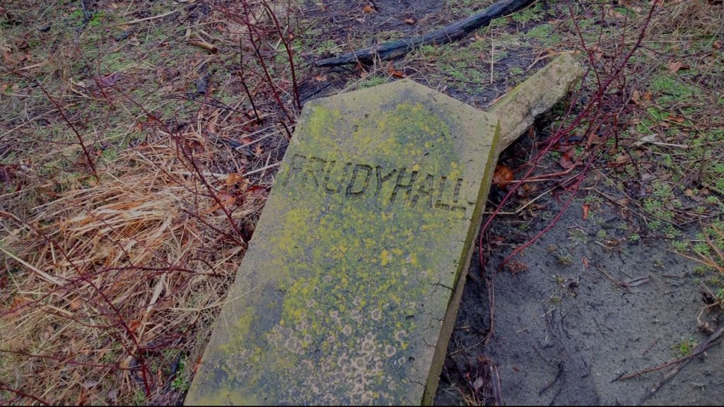 Travels With Charlie: Abandoned Graveyard