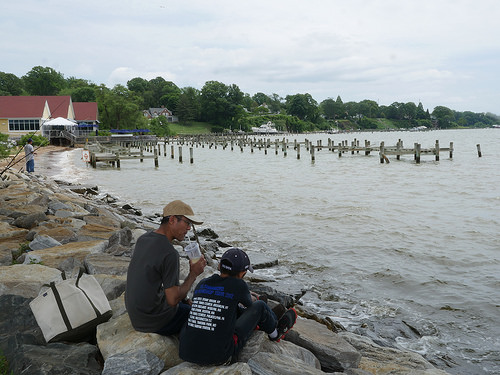 Maryland Offers License-Free Fishing Days in June and July