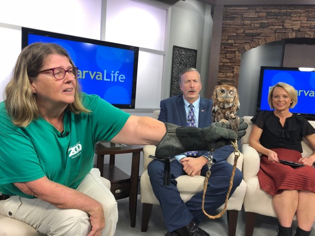What's Happening Today – October 10, 2018