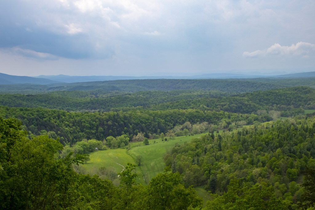 Public Comment Sought for Maryland State Forest Work Plans