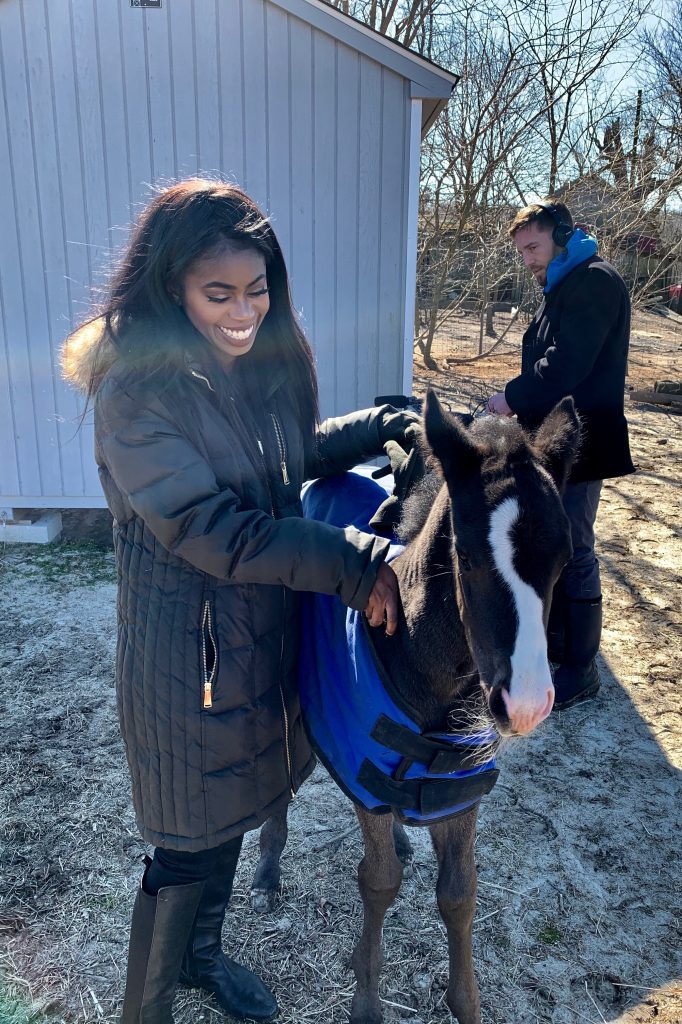 Rescued Wicomico County Horse Gives Birth