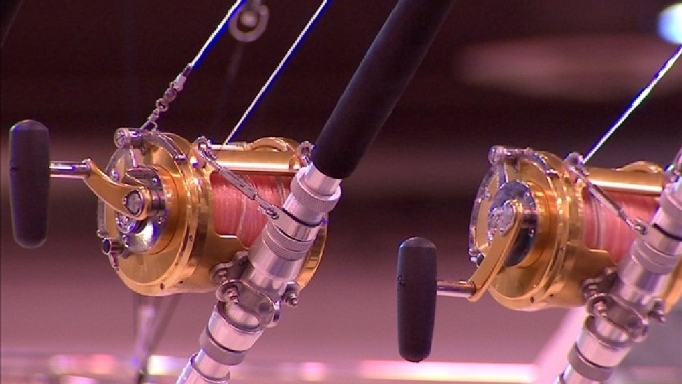 Fewer Dogfish to be Commercially Fished on East Coast in '19