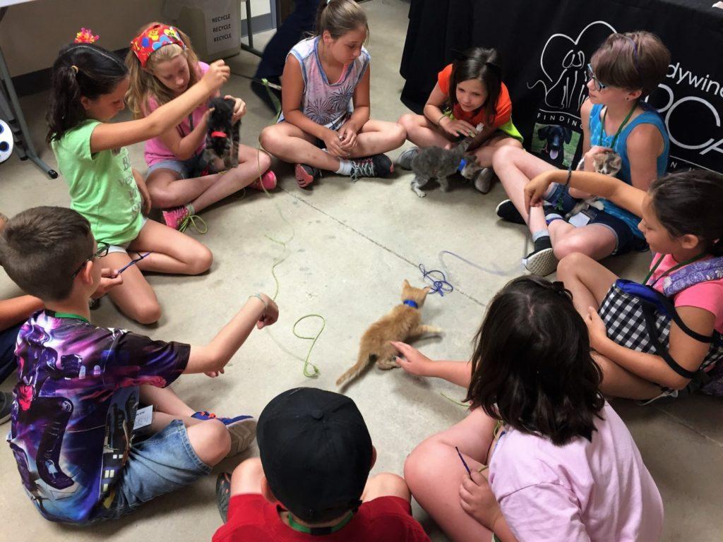 Brandywine Valley SPCA 2019 Critter Camp