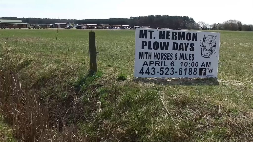 Travels With Charlie: 13th Annual Mt. Hermon Plow Days
