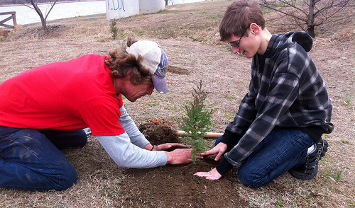 Somerset County Celebrating Arbor Day With Tree Planting