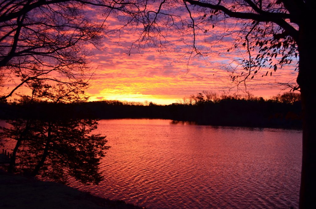 Photographers Invited to Compete in DNREC's 'Delaware Watersheds Photo Contest'