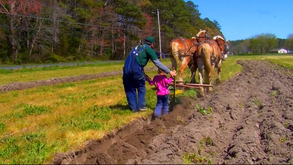 Travels With Charlie: Mt. Hermon Plow Days 2020 Canceled