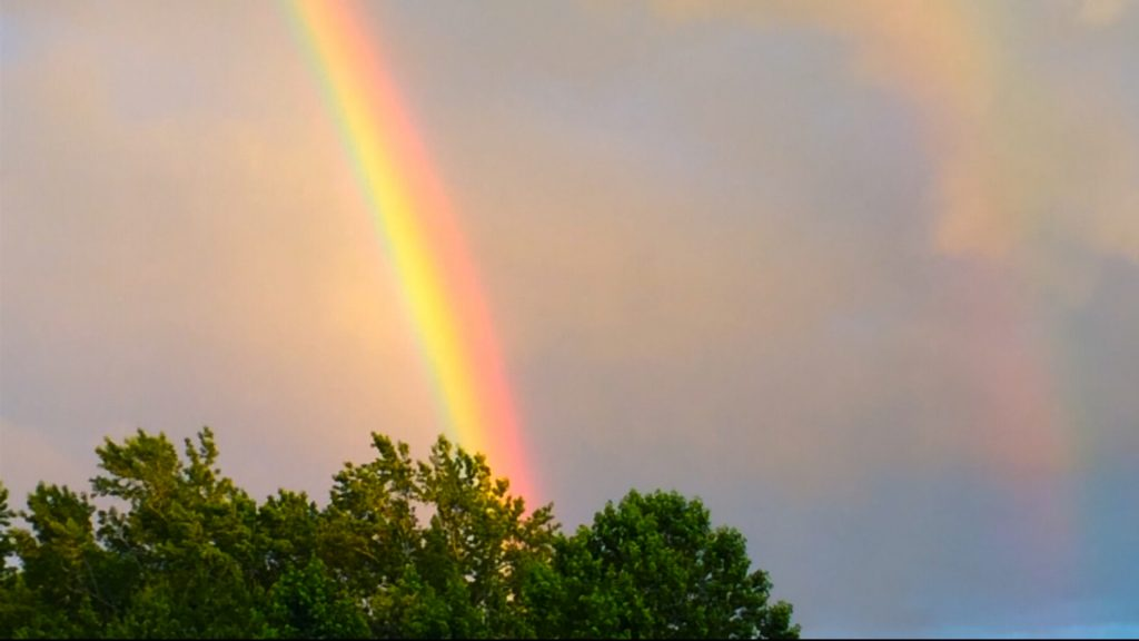 Travels With Charlie: A Rainbow Over Magee Farms (Redux)