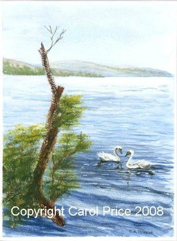 Swans on Loch Lomond