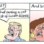 Cat (The Hypochondriac, The Sunday Times)