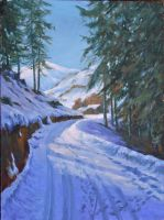 Snowy road with pines