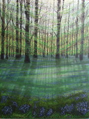 bluebell-wood-3