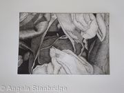 Tulipmania 19 - Etching #1