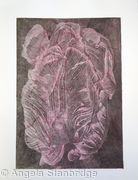 Tulipmania 20 - Etching - Pink