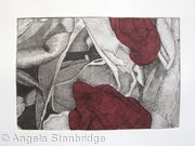 Tulipmania 19 - Etching - Burgandy